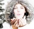 Introducing Winter Festival
